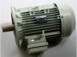 MTFECC 132 B5 P2 KW13 V800 60 F220V 12M